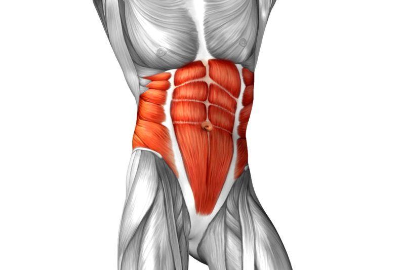 rozciaganie mięśni brzucha blog atlas cwiczen stretching