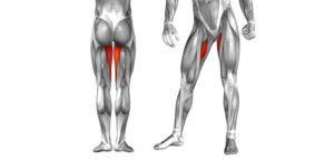 rozciaganie mięśni wewnętrznych ud blog atlas cwiczen