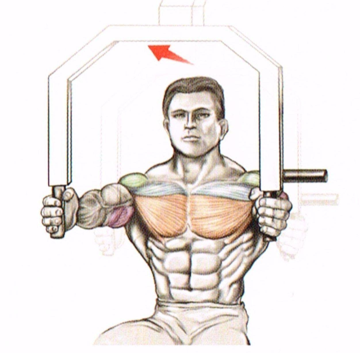 Wyciskania poziome w siadzie na maszynie ćwiczenia na klate atlas ćwiczeń