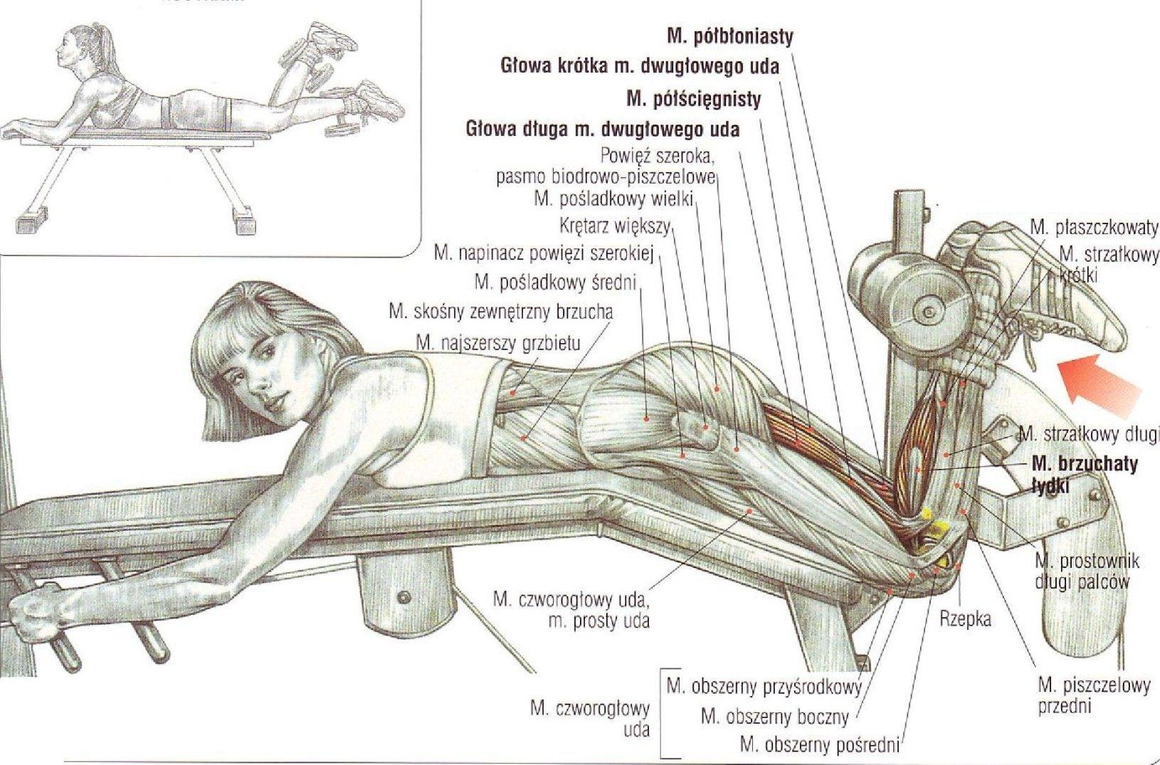Uginanie nóg w leżeniu podudzia podudzi ćwiczenia na nogi