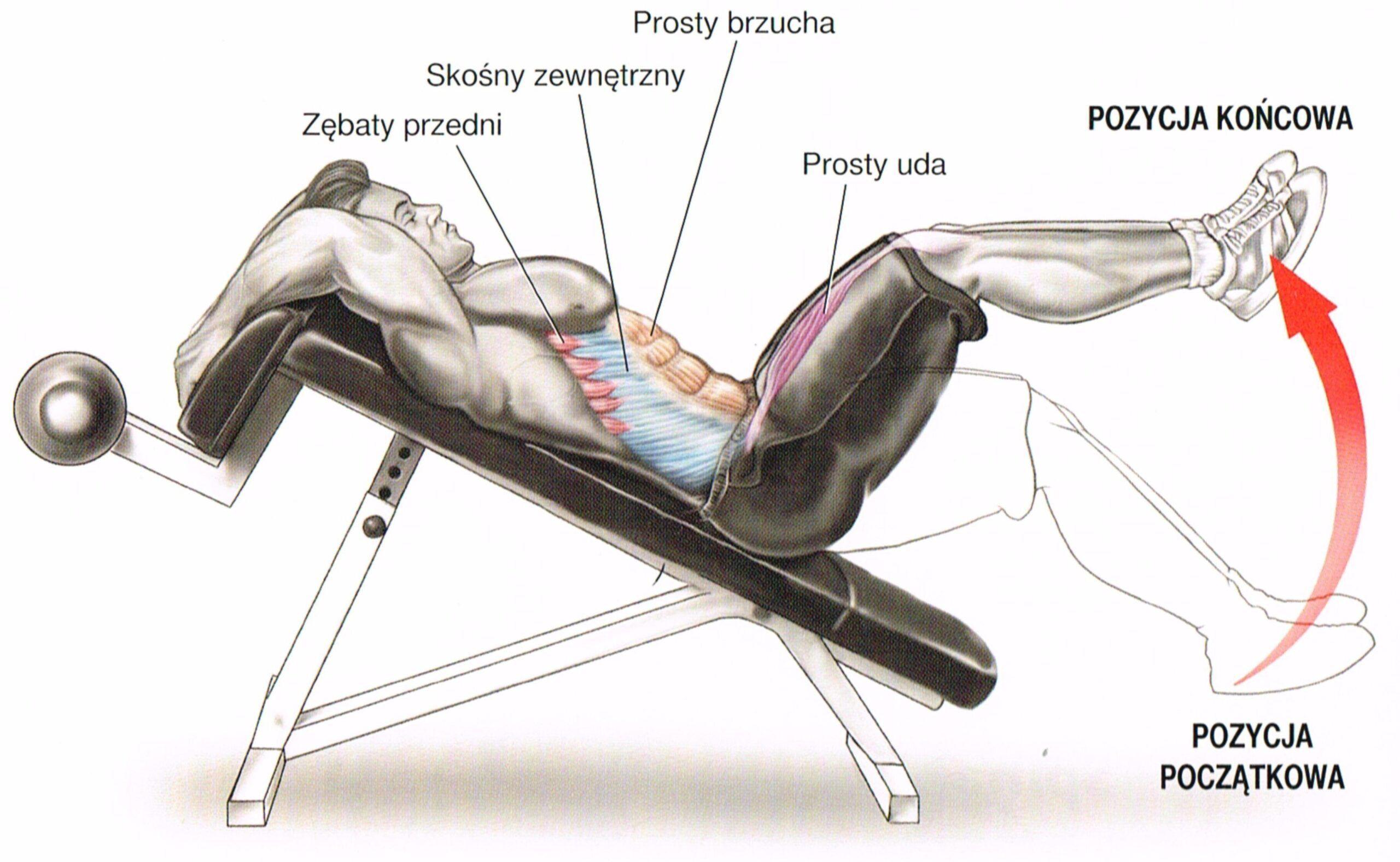 unoszenie nóg w leżeniu na skośnej ławce